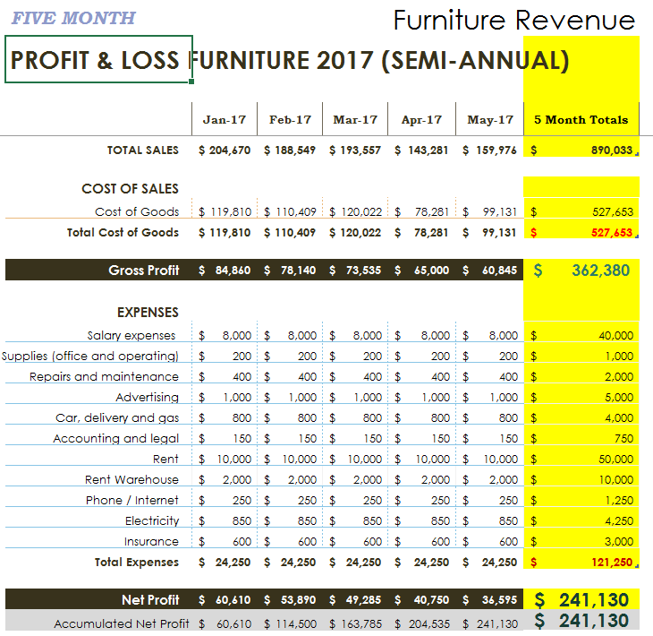 5 MONTH PROFIT AND LOSS PIC